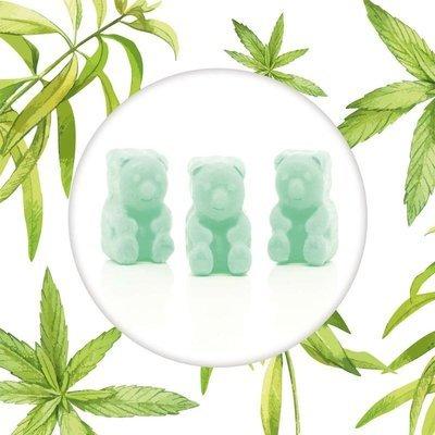 Ted & Friends soy wax melts bears 50 g - Sky, Sun & Sand